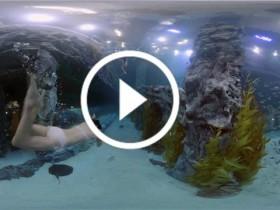 VR资源水族馆里的美女,值得一看