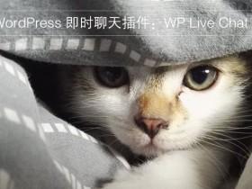 WordPress 即时聊天插件:WP Live Chat Support