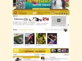大气婚纱影楼网站织梦模板 DEDECMS摄影工作室 v2.7