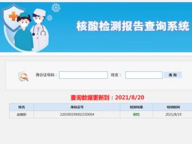 核酸检测报告查询系统 v20210831